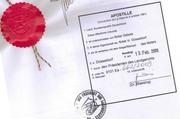Перевод документов  для  пенсии